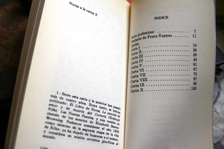 cartas-a-un-joven-poeta-12